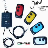 Jane 2 Button Remotes & Radio Reciever-  The ideal upgrade for your gate or garage - 433Mhz Self Learning